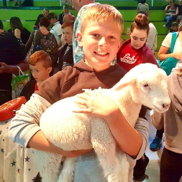 A happy boy holding a little lamb