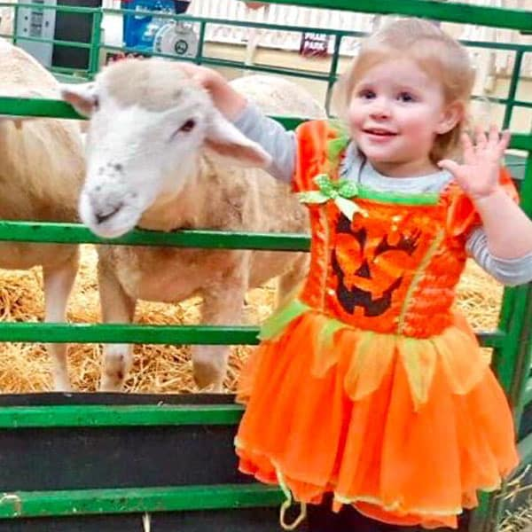 A little girl in Halloween costume petting a newborn lamb