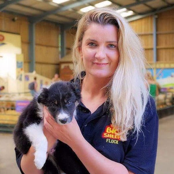 A member of staff holding a puppy