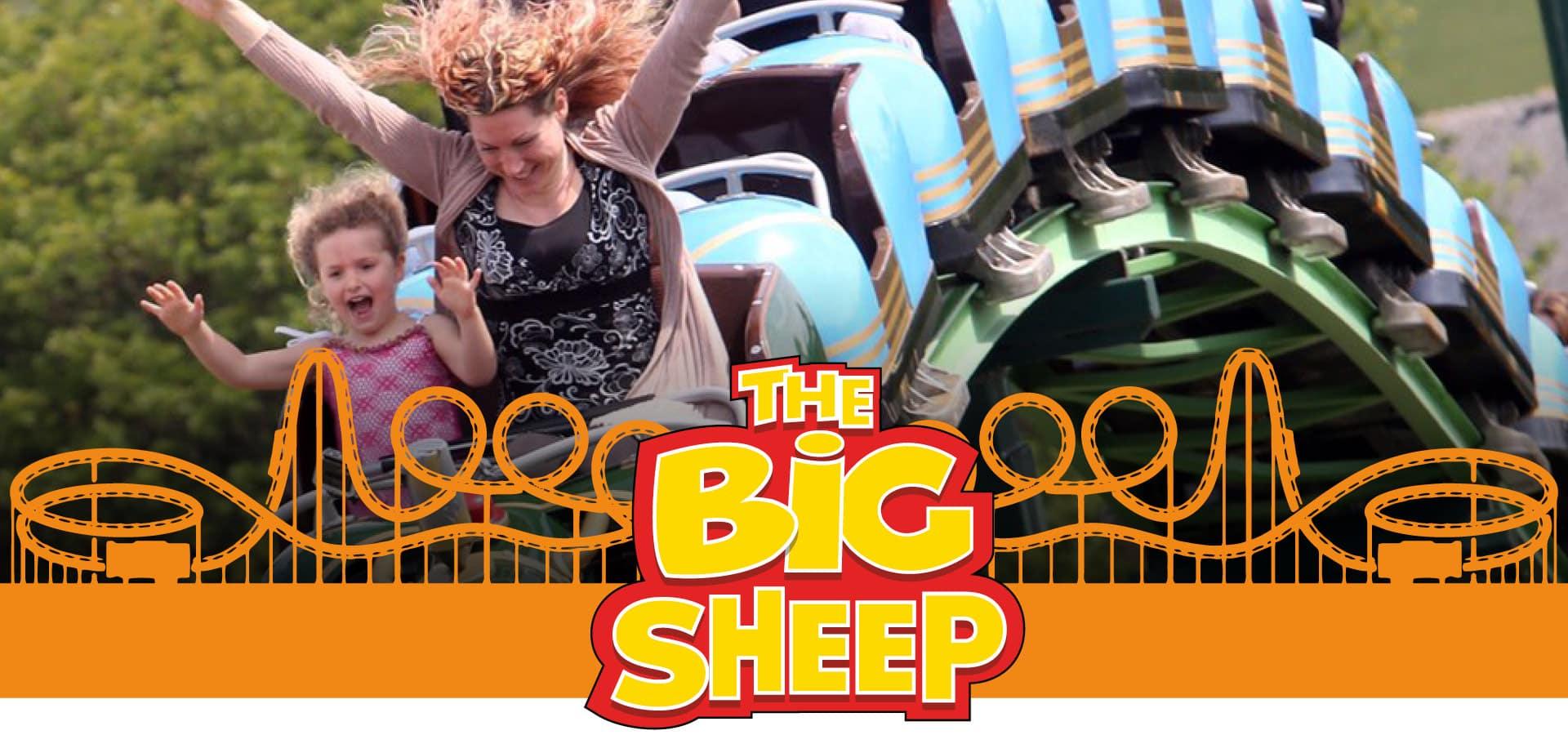 The Big Sheep Family Rides