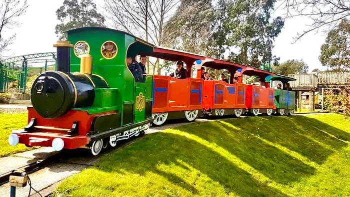 The Big Sheep Train Ride