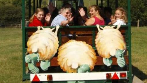 A family smiling and waving on the tractor safari