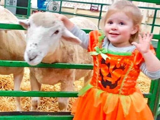 A little girl in Halloween costume petting a sheep