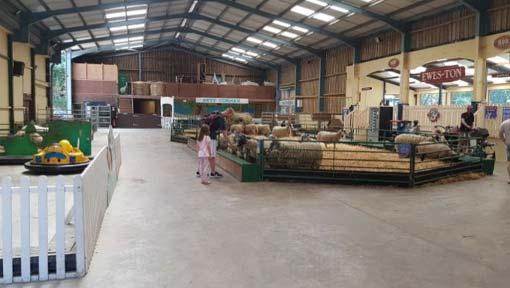 The Big Sheep Animal Barn
