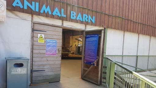 The Big Sheep animal barn entrance