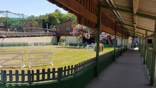 The Big Sheep Duck Arena