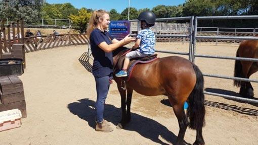 Pony Ride Arena