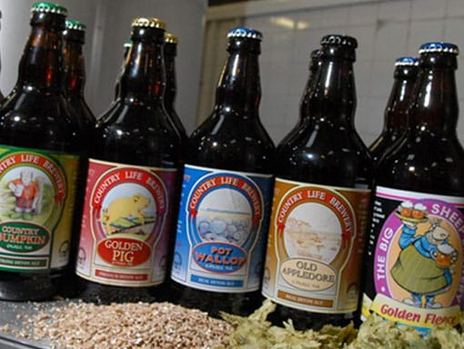 Some of The Big Sheep bottled beers from the brewery
