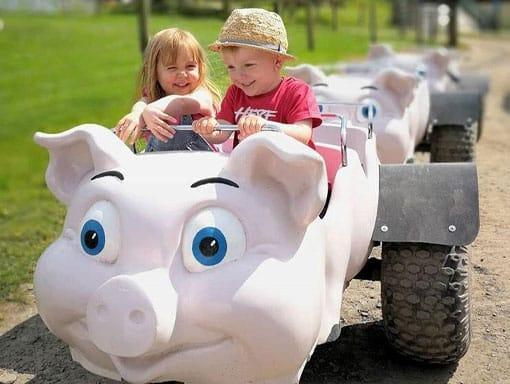Toddlers enjoying The Big Sheep train ride
