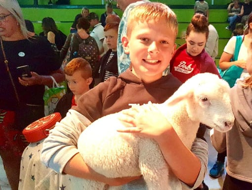 A happy young boy holding a little lamb