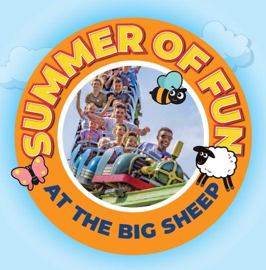 The Big Sheep summer of fun