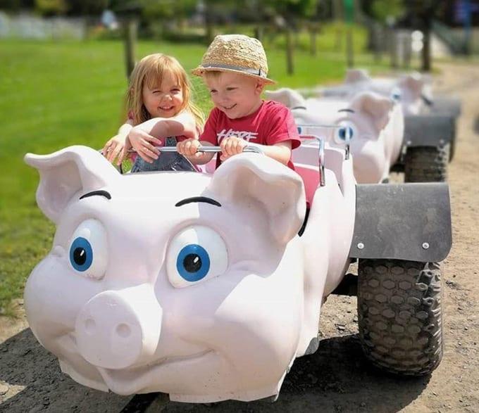 Happy Children on Pig Ride