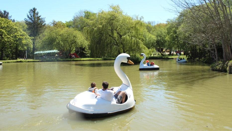 People enjoying the Swan Lake Ride